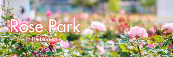 rosepark-title