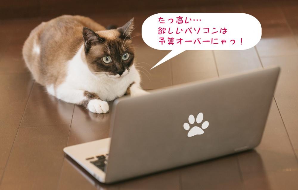 欲しいパソコンは予算オーバーな猫