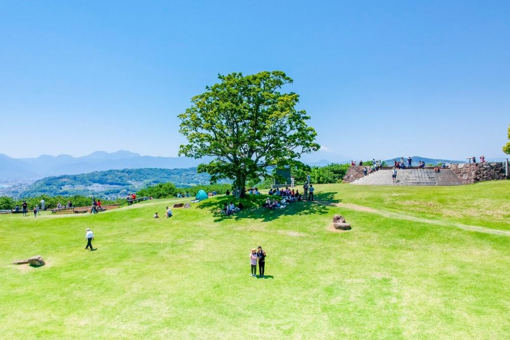 吾妻山公園シンボルツリーをバックにドローンでセルフショット