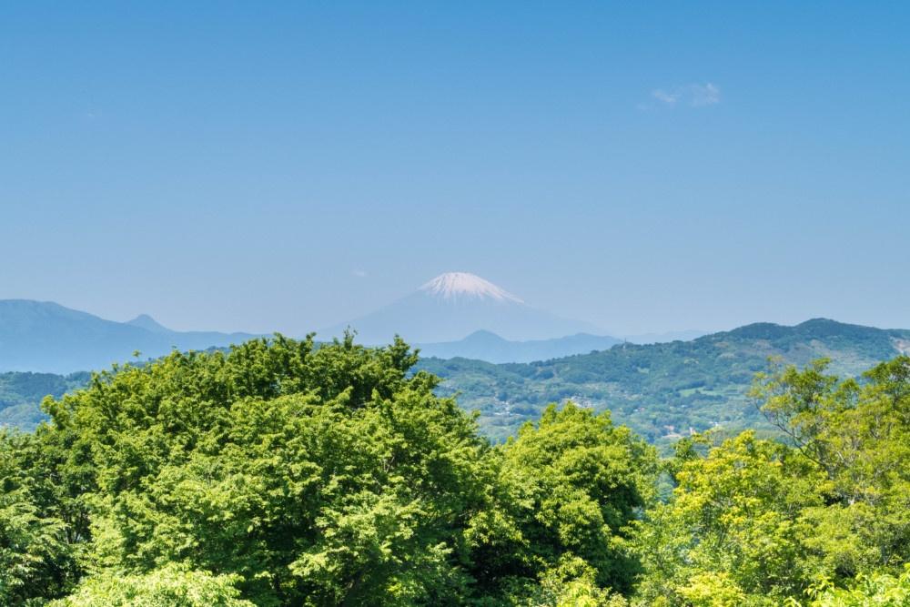 吾妻山公園山頂からは富士山もよく観えます