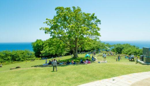湘南地域の隠れた絶景スポット二宮町「吾妻山公園」へピックニック!ドローンで空撮もしたよ