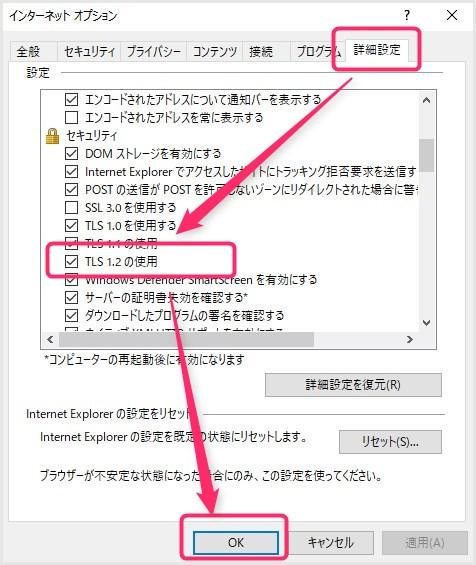 IE 11 TSL1.2 の設定