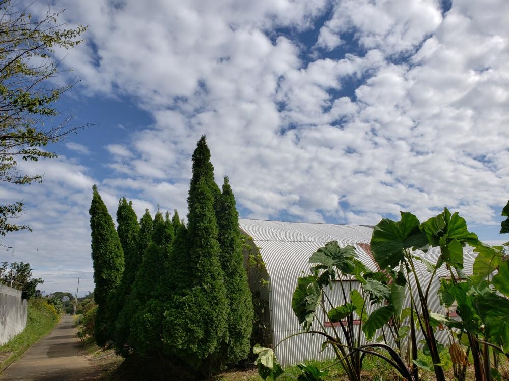 Galaxy S9 カメラ風景・建築物サンプル