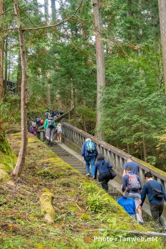 徳川家康墓所へ続く階段
