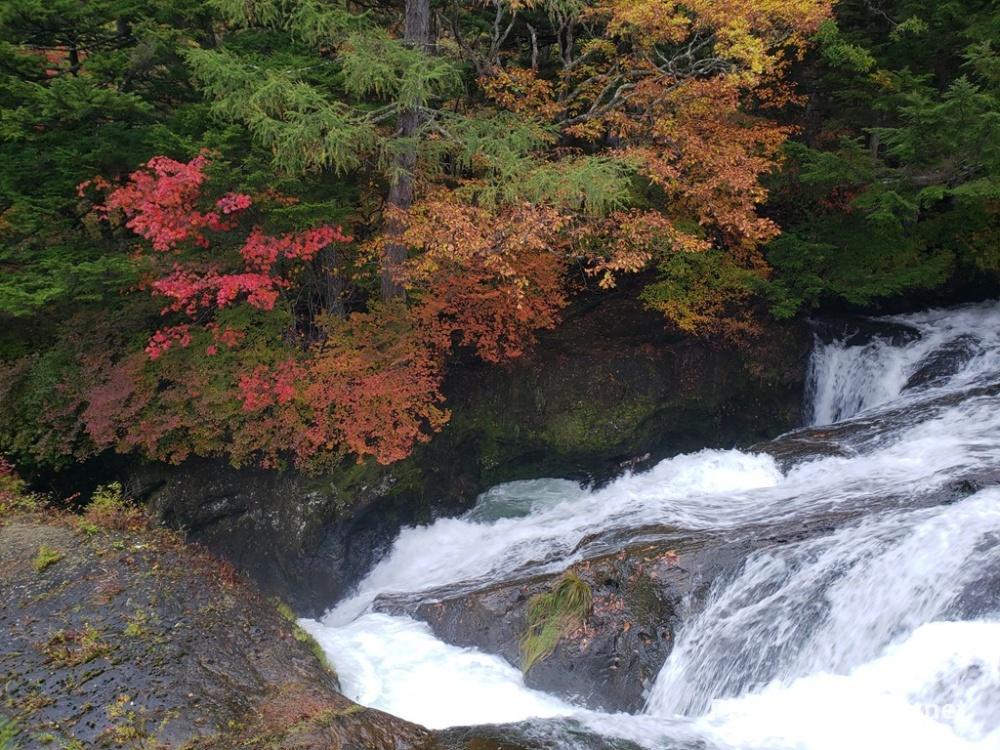 竜頭の滝の上流