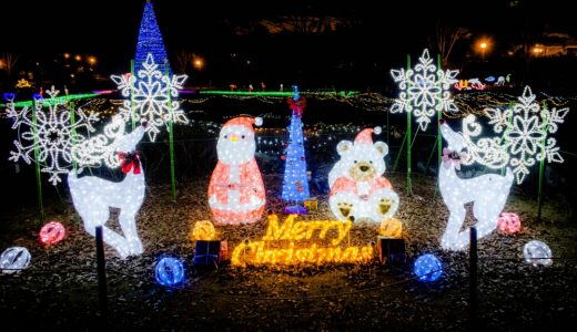 今年も東海大学クリスマスイルミネーションを観にいってきました