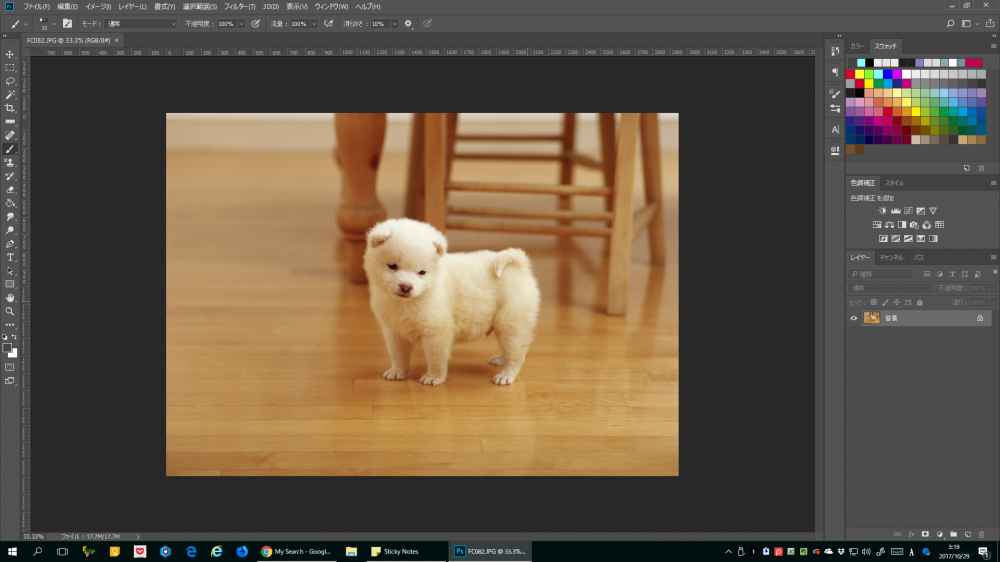 Photoshop CC 動物の切り抜き