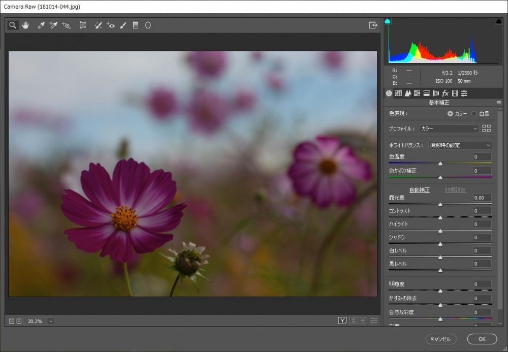 Photoshop CC で JPEG画像も Camera RAW で編集できるようにする方法