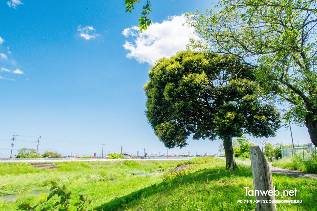 鈴川沿いの休憩スポット