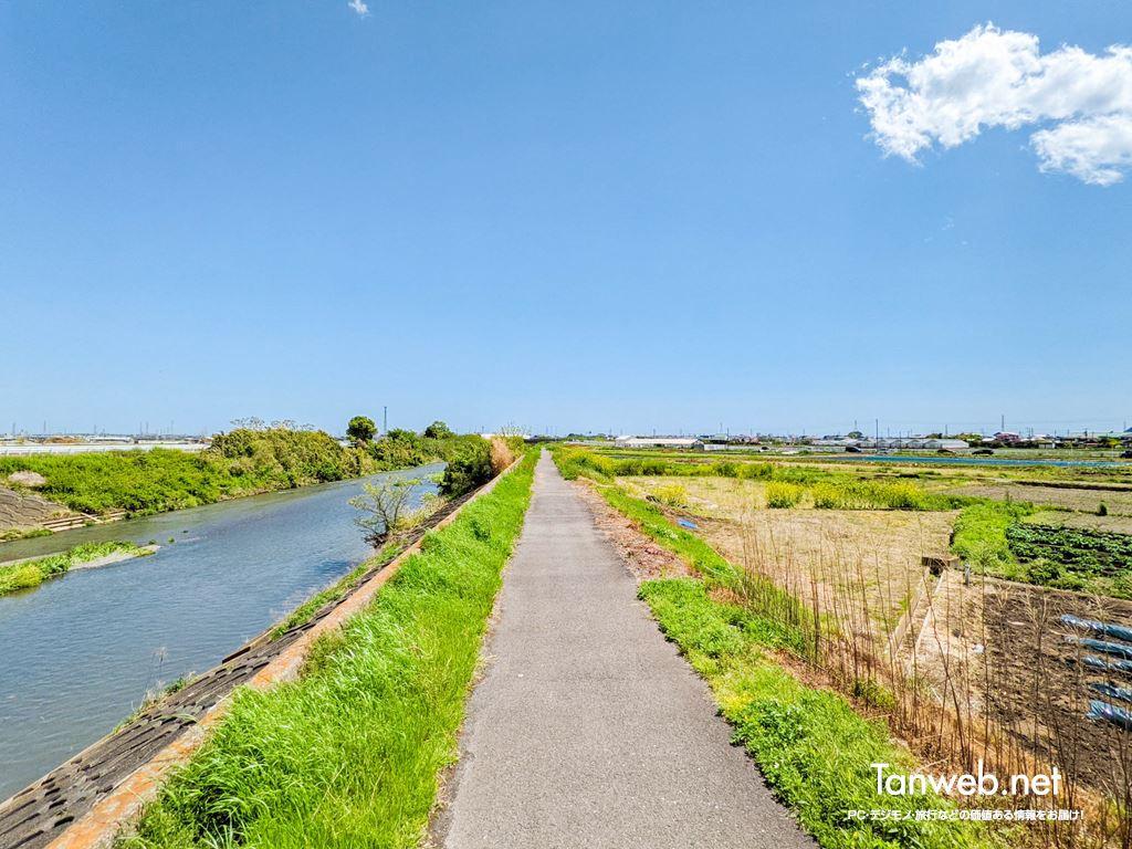 金目川サイクリングコース(鈴川沿い)