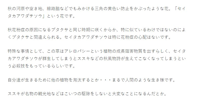 游ゴシック体で表示されている記事本文